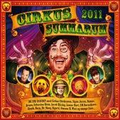 Cirkus Summarum von DR Big Band