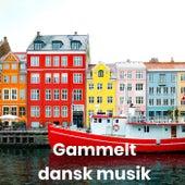 Gammelt dansk musik van Various Artists