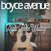 Right Here Waiting de Boyce Avenue