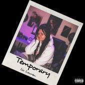 Temporary by Liv Lauren