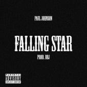 FALLING STAR by Paul Johnson