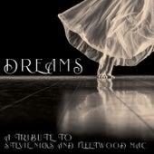 Dreams - A Tribute to Stevie Nicks and Fleetwood Mac by Alixandrea Corvyn