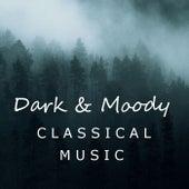 Dark & Moody Classical Music de Various Artists
