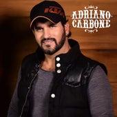 Pocket One von Adriano Carbone