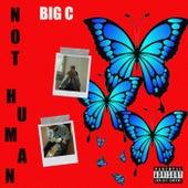 Not Human de Big C
