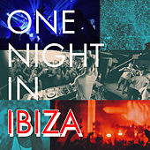 One Night In Ibiza di Various Artists