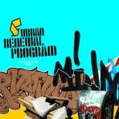 Urban Renewal Program by Various Artists