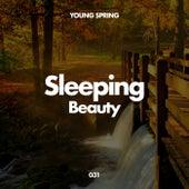 Sleeping Beauty de Sleep Sounds of Nature