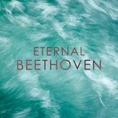 Eternal: Beethoven de Yehudi Menuhin