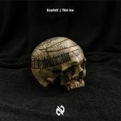 Thin Ice de Scarlett