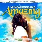 Amazing de Munga