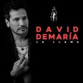 La llama by David DeMaria