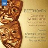 Beethoven: Canons & Musical Jokes de Cantus Novus Wien
