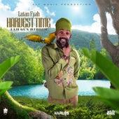 Harvest Time de Lutan Fyah