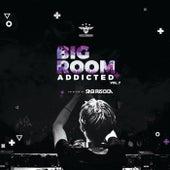 Bigroom Addicted Vol. 07 von Sasi Riscica