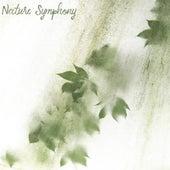 Nature Symphony de Zen Music Garden