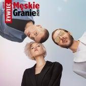 Świt by Meskie Granie Orkiestra 2020
