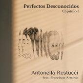 Perfectos Desconocidos, Capitulo 1 by Antonella Restucci