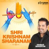 Shri Krishnam Sharanam - Single de Shankar Mahadevan
