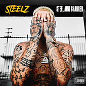 Steel Ain't Changed by Steelz
