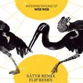 Safar (Flip Remix) / Dada (Sátyr Remix) von Web Web