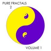 Pure Fractals 2, Vol. 1 de Kevin Ferguson
