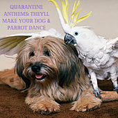 Quarantine Anthems: They'll Make Your Dog & Parrot Dance de Various Artists