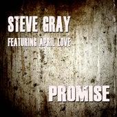 Promise von Steve Gray