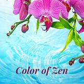 Color of Zen de Rainmakers