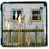To Build A Home (Versions) von Cinematic Orchestra