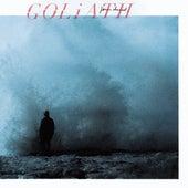Goliath by Jonas David