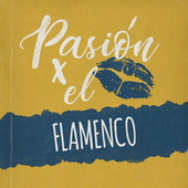 Pasión por el Flamenco de Various Artists