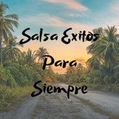 Salsa Éxitos Para Siempre de Frankie Ruiz, Hildemaro, Jose Alberto El Canario, Nino Segarra, Rey Ruiz, Tito Gomez, Tito Rojas, Tony Vega