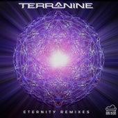 Eternity Remixes von Terra Nine