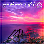Symphonies of Life, Vol. 16 - Friedrich, Academy of St. Martin-in-the-Fields - Hummel, Mozart, L, Haydn, J, Haydn, M; Klassische Trompetenkonzerte by Academy of St. Martin in the Fields Orchestra