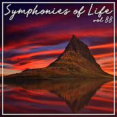 Symphonies of Life, Vol. 88 - Shostakovich, Schnittke: Rayok, Chamber Symphony op. 110, Prelude & Scherzo de Vladimir Spivakov