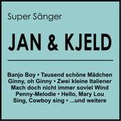 Super Sänger de Jan & Dean