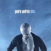 Alas de Pedro Andrea