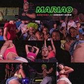 Mariao (feat. Cherry Scom) by Santana