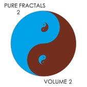 Pure Fractals 2, Vol. 2 de Kevin Ferguson