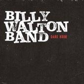 Dark Hour von Billy Walton Band
