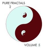 Pure Fractals 2, Vol. 5 de Kevin Ferguson