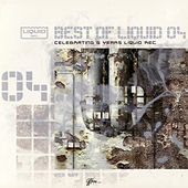 Best Of Liquid, Vol. 4 von Various Artists