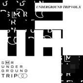 UndergrounD TriP Vol.X von Miguel Serrano
