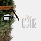 Cactus de Solfear