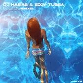Cueca Remixes de Dj Habias