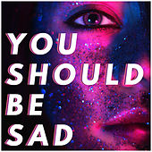 You Should Be Sad by Sassydee
