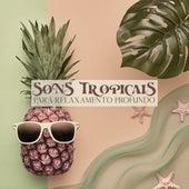 Sons Tropicais para Relaxamento Profundo - Coleção de Ótimas Músicas Naturais da Nova Era que o Ajudarão a se Livrar do Estresse e da Raiva by The Relaxation