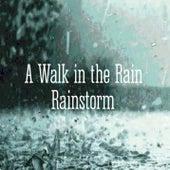 A Walk In The Rain de Tenacious Music