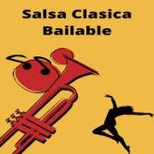Salsa Clasica Bailable de Andy Montañez, El Gran Combo de Puerto Rico, Hector Lavoe, Ismael Miranda, Ismael Rivera, Rubén Blades, Willie Colón